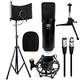 AxcessAbles SF-101KIT Recording Studio Microphone Isolation Shield w/Stand (Black with Condenser Mic)