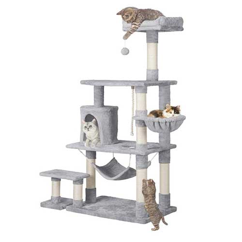 Top 10 Best Cat Tree for Large Cats in 2021 Reviews