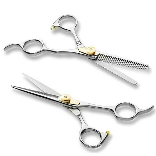 9. Professional Barber/Salon Scissor Hair Cutting Set - 6.5
