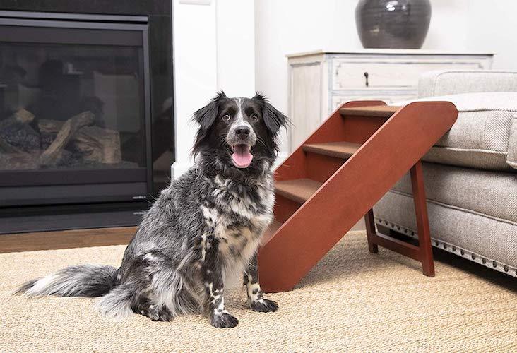 4. PetSafe Solvit PupSTEP Wood Pet Stairs