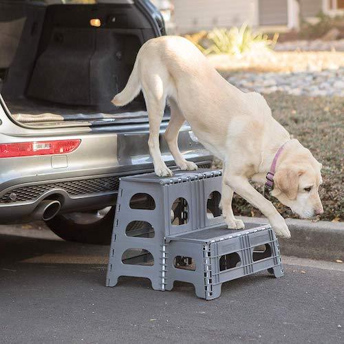 2. Petstep Gray Range Kleen Folding 2 Step Dog Assist