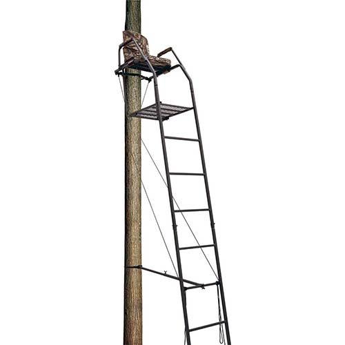 10. Big Dog 16 Foot Blue Tick Ladder Tree Stand, BDL-300